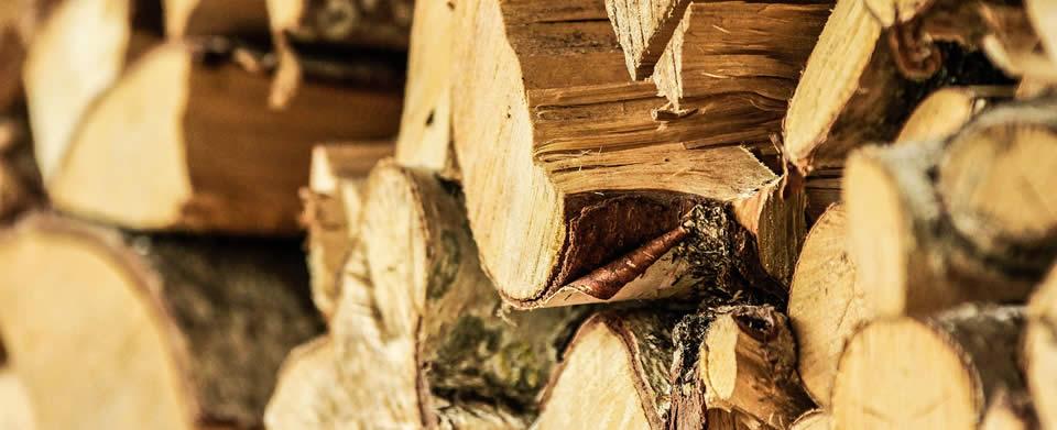 Tipi di legno per arredamento galli mobilificio - Tipi di legno per mobili ...